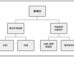 PMP®考试第二章:项目运行环境章节重点汇总